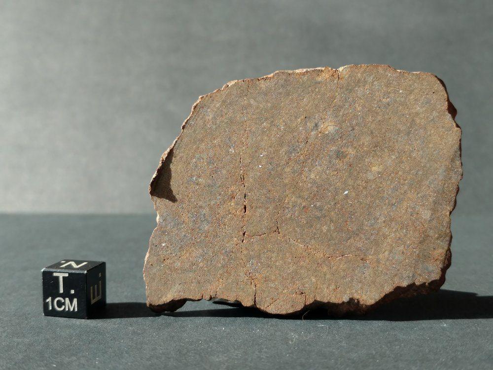 NWA 7888 LL7 Very Rare Type! 30.3 gram Full Slice Meteorites For Sale