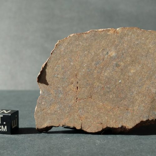 NWA 7888 LL7 Very Rare Type! 30.3 gram Full Slice Meteorites For Sale
