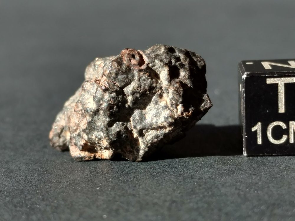NWA 7454 CV3 4.88 gram *SOLD* Individual Meteorites For Sale