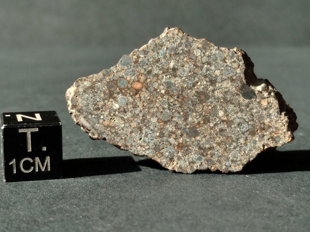 UNWA 5.7 gram Full Slice Meteorite It's a Chondrule Party Meteorites For Sale
