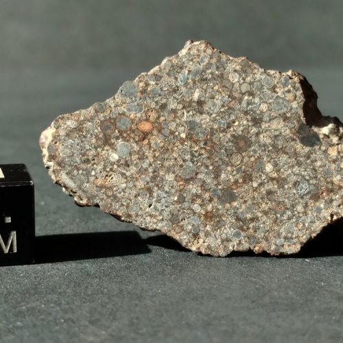 UNWA 5.7 gram Full Slice Meteorite It's a Chondrule Party Meteorites For Sale