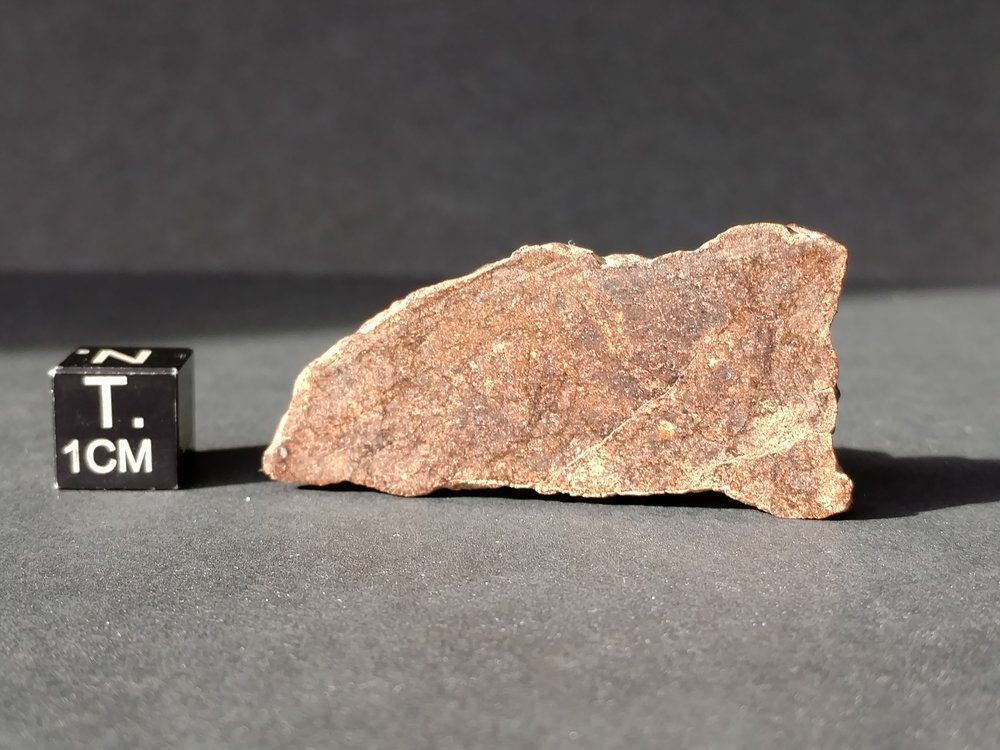 NWA 7888 LL7 7.9 gram Part Slice *SOLD* Meteorites For Sale