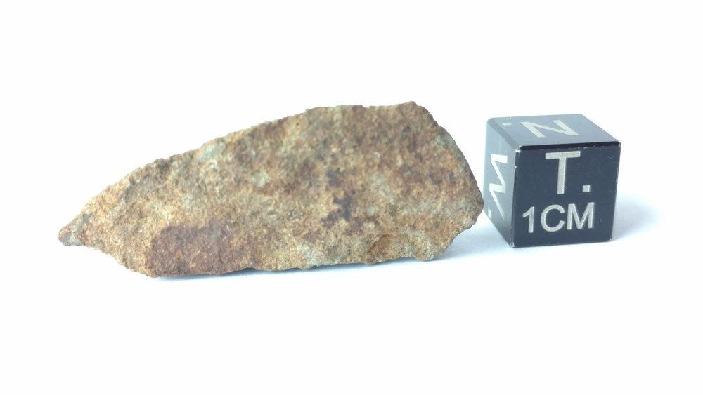 NWA 2965 EL6-7 Chondrite 4.6 gram End Cut Meteorites For Sale