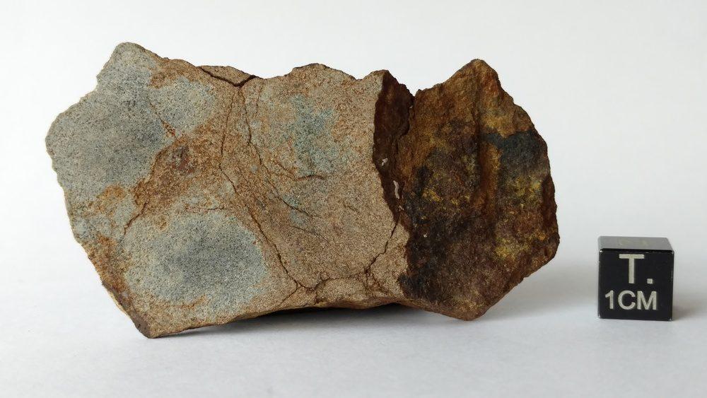 NWA 2965 EL6-7 Chondrite 55.5 gram End Cut Meteorites For Sale