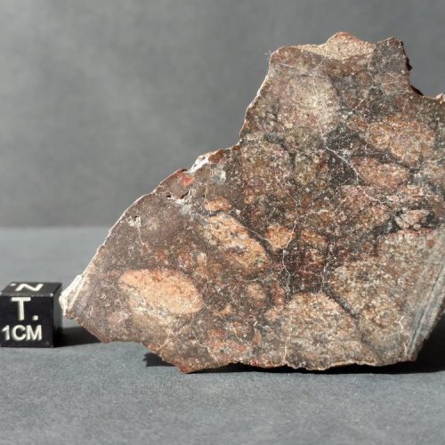 NWA HED Achondrite Eucrite Meteorite End Cut 47.6g Meteorites For Sale