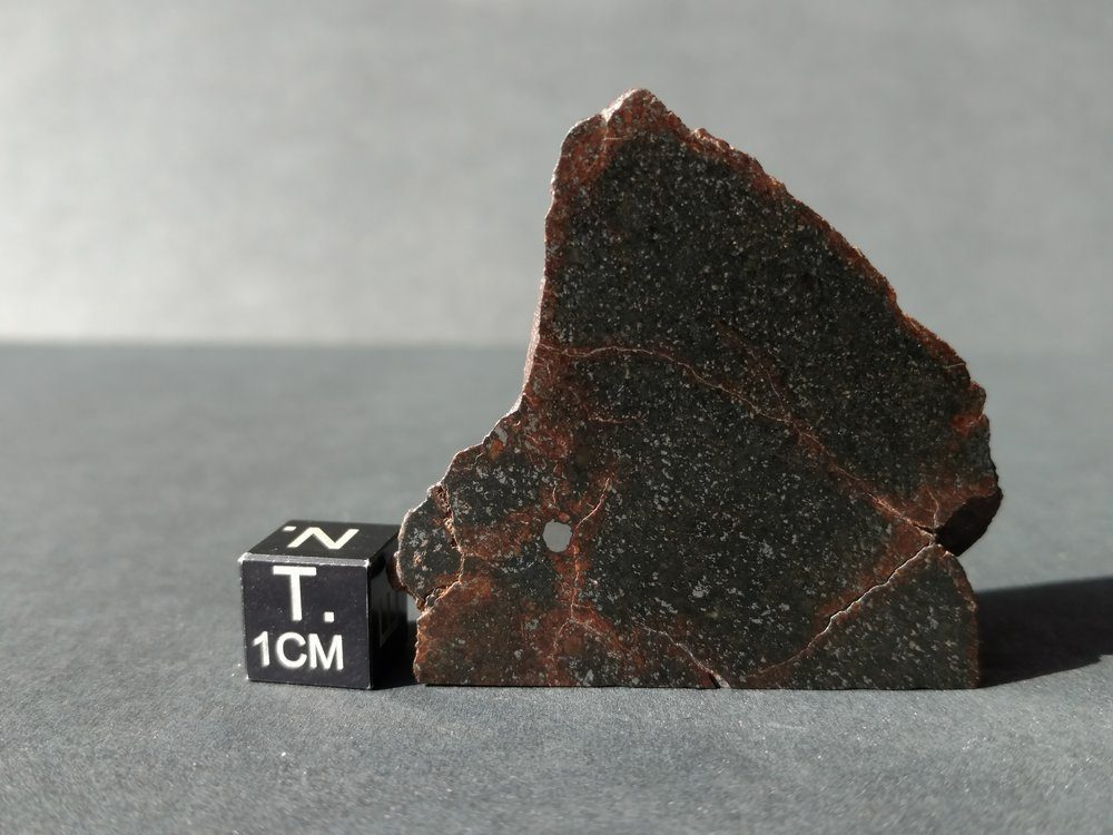 NWA Meteorite Slice! 31.7 grams Meteorites For Sale