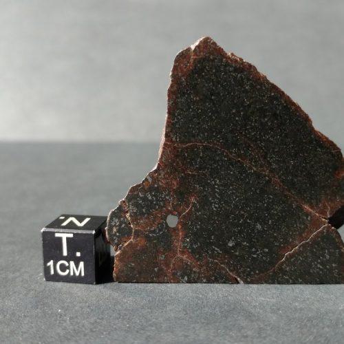NWA Meteorite Slice! 31.7 grams Meteorites For Sale