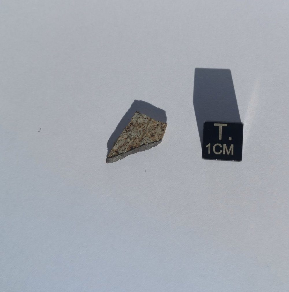 Osceola Florida Witnessed Fall! Part Slice With Crust Meteorites For Sale
