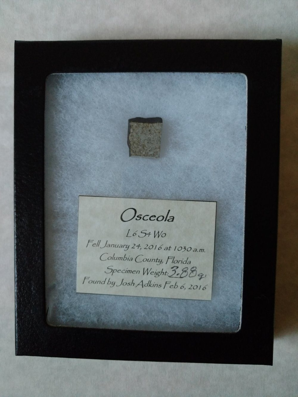 Osceola Witnessed Fall From Florida! *SOLD* Meteorites For Sale