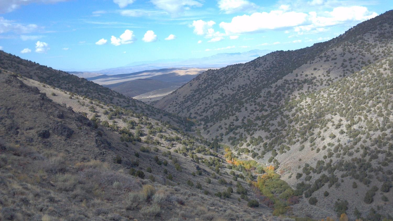 Battle Mountain Nv. Photo Larry Atkins