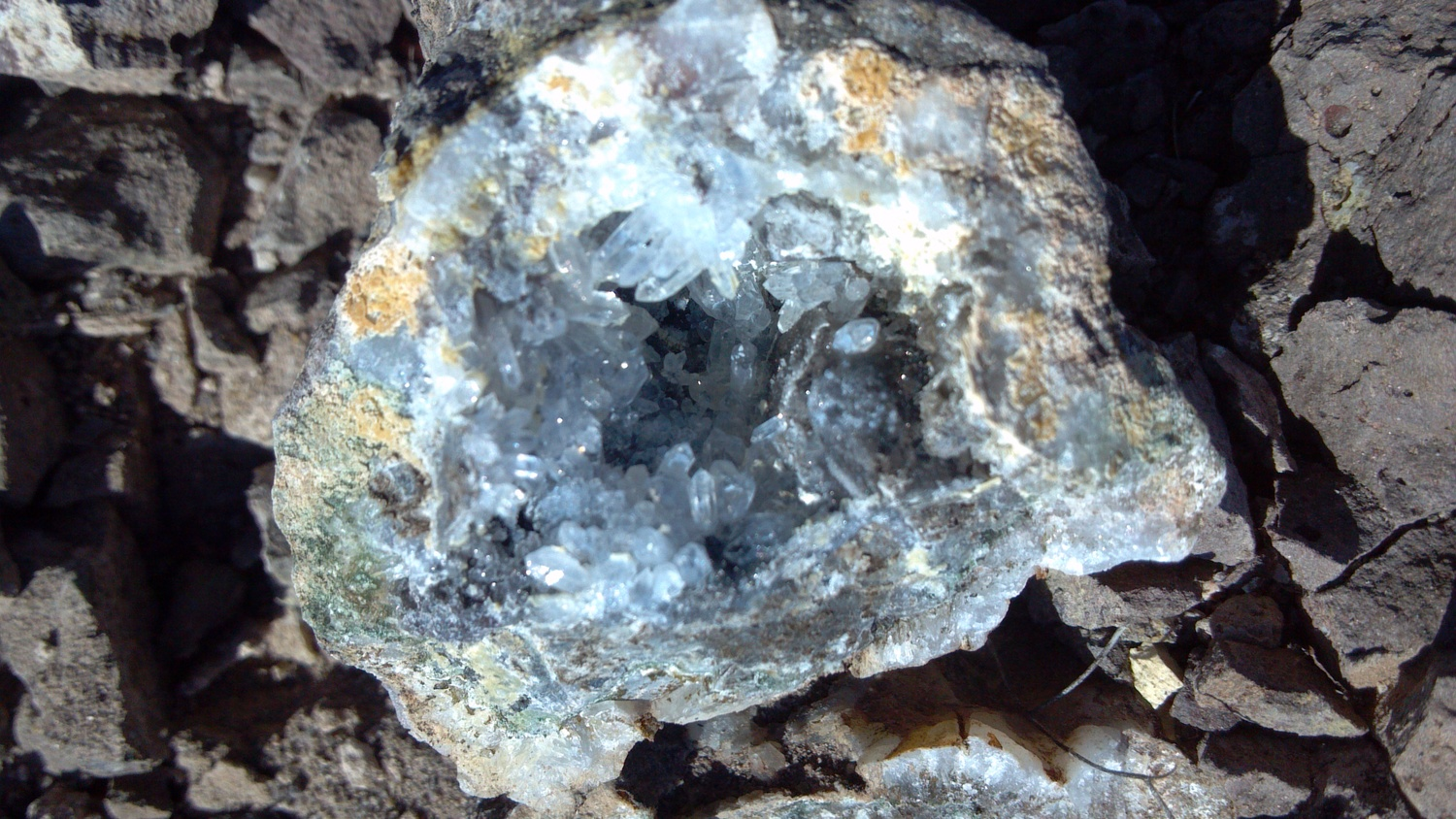 A geode in the Bullhead City Strewn Field. Photo Larry Atkins