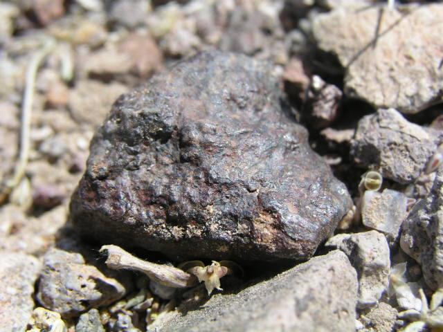 Franconia Meteorites