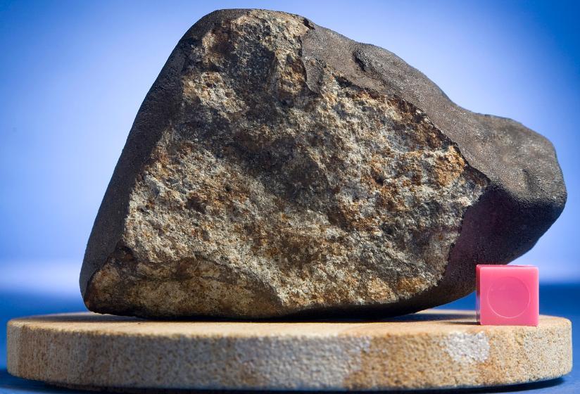 Main mass of Mifflin found by Joe Kirchner. 332 grams. Photo Credit Mark Hirsch.