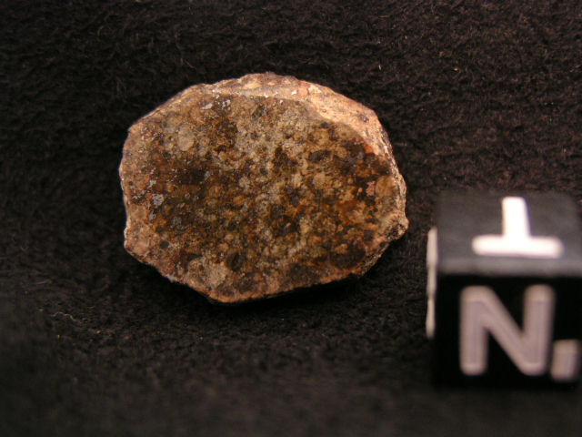 Photo Larry Atkins - meteorites under the scope study - A small Gold Basin I found in the 1990's.