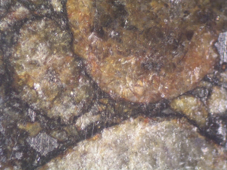 Photo Larry Atkins - meteorites under the scope study - misc.