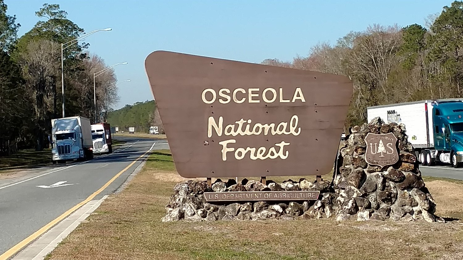 Osceola National Forest - Photo Larry Atkins