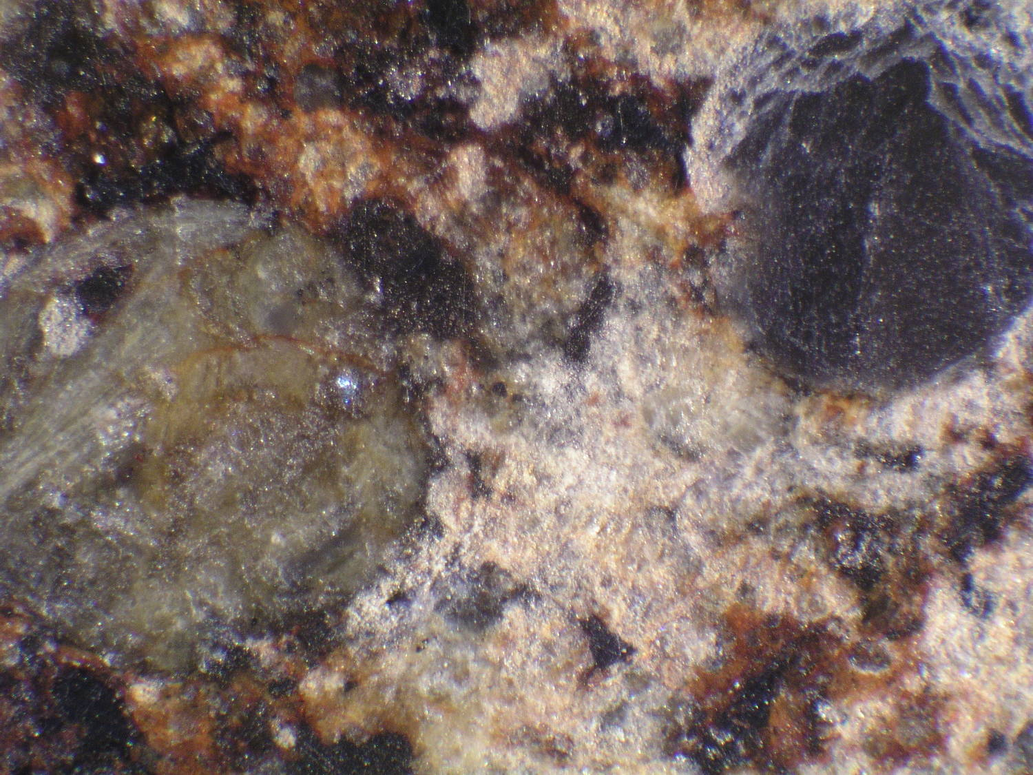 Photo Larry Atkins - meteorites under the scope study Red Dry Lake 068